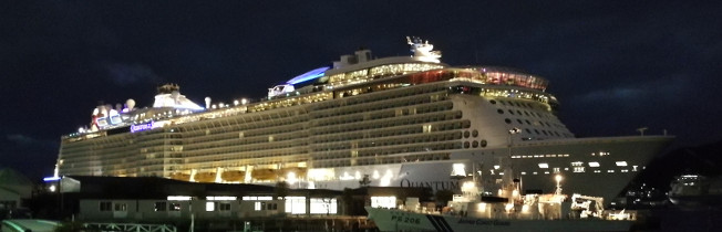 Quantum of the Seas - Night view